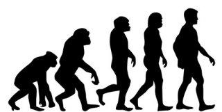 Evoluce člověka od počátku