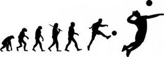 Evoluce ve volejbalového hráče